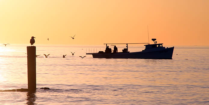 An image of gulls and sunset and a deadrise boat.