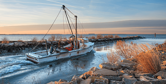 An oyster boat rides between a jetty and land as it heads out into the Bay at sunrise.